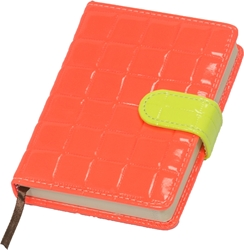 Picture of PLANNER YASAC FLUO COLORS 9,9x14,1 CM